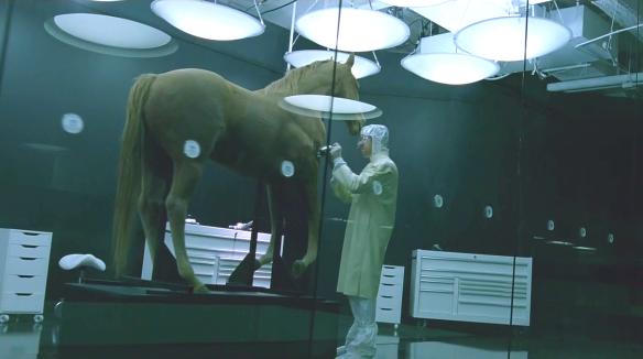 westworld-horse